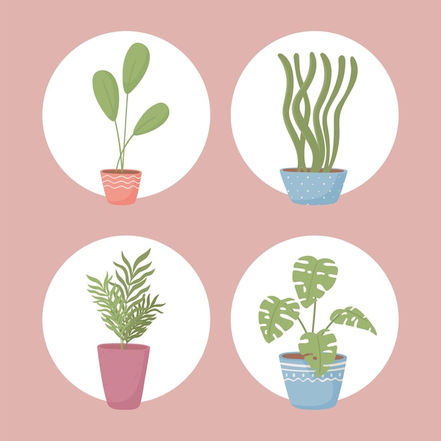 Набор иконок горшечные растения