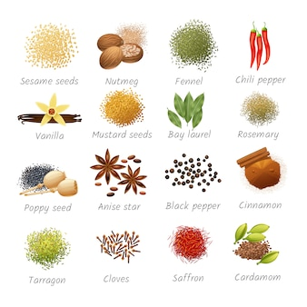 Icons set with titles of piquant food ingredients and fragrant spices realistic