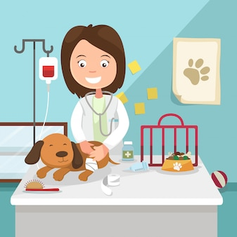 The idea of female veterinarian curing illustration