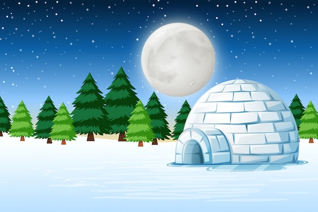 Igloo in winter night landscape