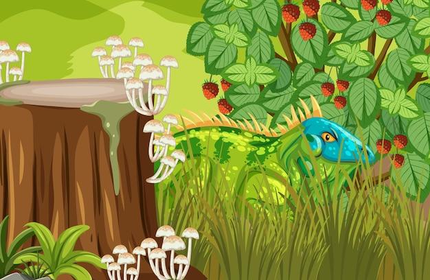 ジャングルに隠されたイグアナ