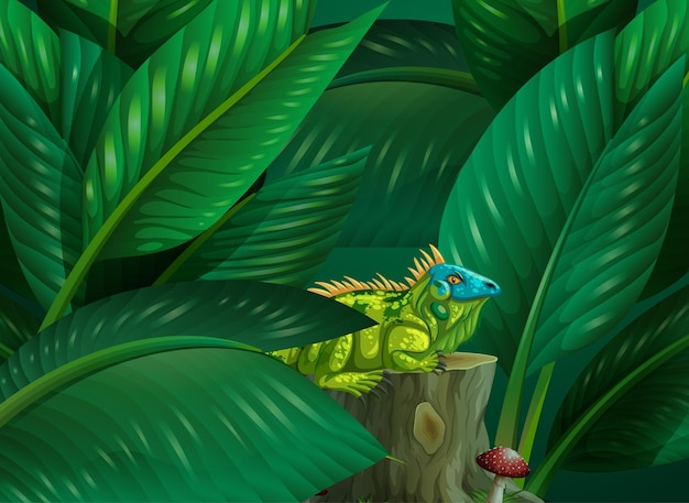열대 잎 배경에 숨겨진 이구아나