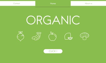 Illsutrated of organic food background