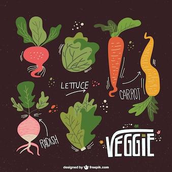 Illustrato raccolta verdure