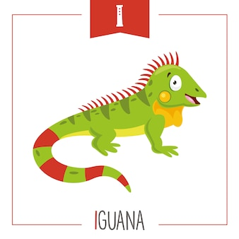 Illustration of alphabet letter i and iguana