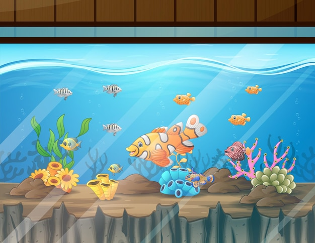Illustration of the aquarium with fishes algae and coral
