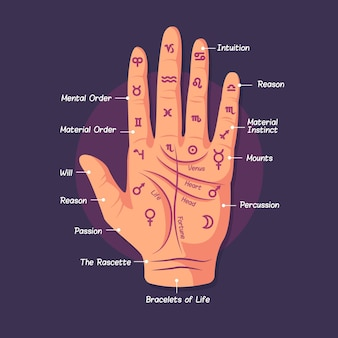 Illustration of the art of palmistry