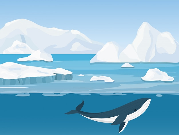 Illustration of beautiful arctic landscape of northern and antarctic life. icebergs in ocean and underwater world with whale