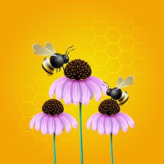Illustration of bee pollinating on echinacea flower.