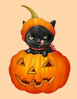 Illustration of a black cat in pumpkin icon for halloween