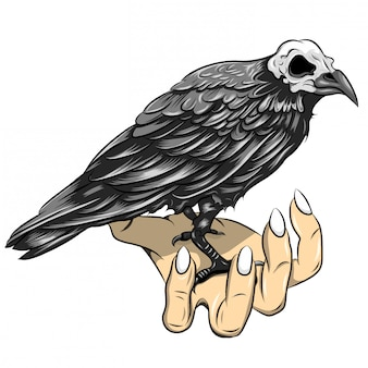 Illustration of black crow with stand on hand