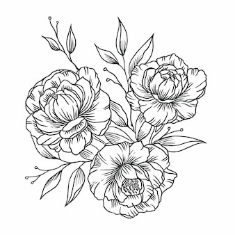Illustration black peonies