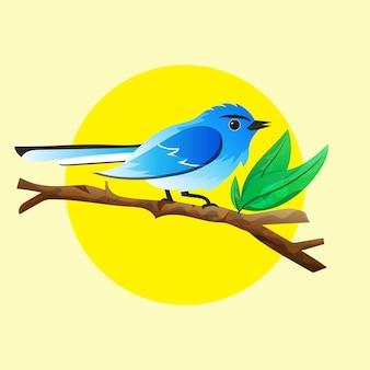 Illustration of bluegray gnatcatcher hand drawn illustration