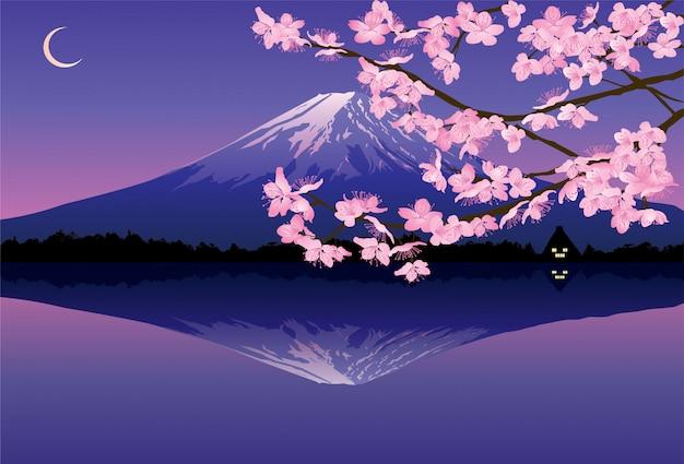 Illustration of branches of sakura blossom on white background