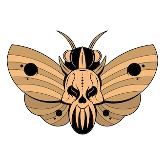 Illustration of a butterfly dead head with a skull-shaped pattern on the thorax. vector banner with realistic moth close up top view, black and white and colored