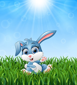 Illustration of cartoon rabbit sitting in the grass on a background of bright sunsh