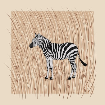 Illustration. a cartoon zebra on a beige background with brown grass and flowers
