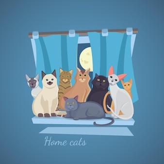 집에서 그림 고양이