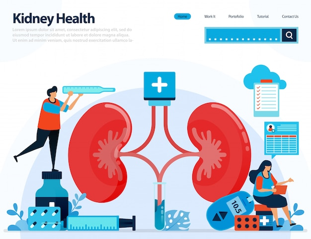 Illustration for checking kidney health. diseases and disorders of kidney.