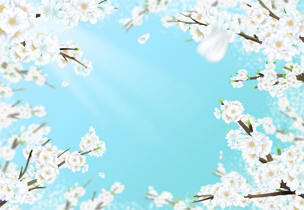 Illustration of a cherry tree in full bloom under a blue sky with sunlight.
