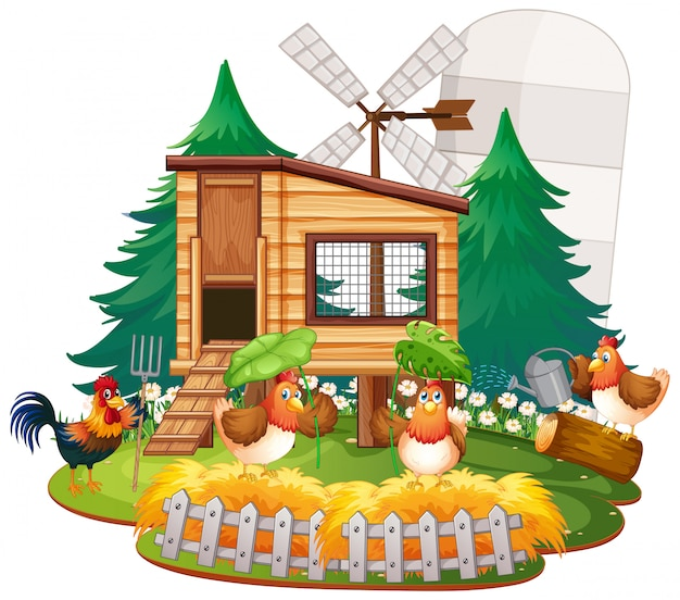 Illustration of chicken coop with chickens