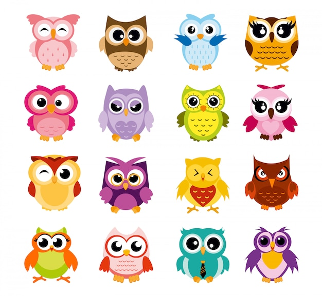 Illustration of colorful cartoon funny owls set on white background. happy and joyful birds set in flat style.