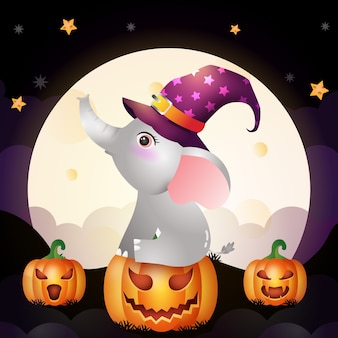 Illustration of a cute cartoon halloween witch elephant stand on pumpkin front the moon