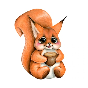 Illustration of a cute cartoon squirrel with a nut isolated