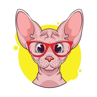 Illustration of cute sphynx cat avatar with glasses