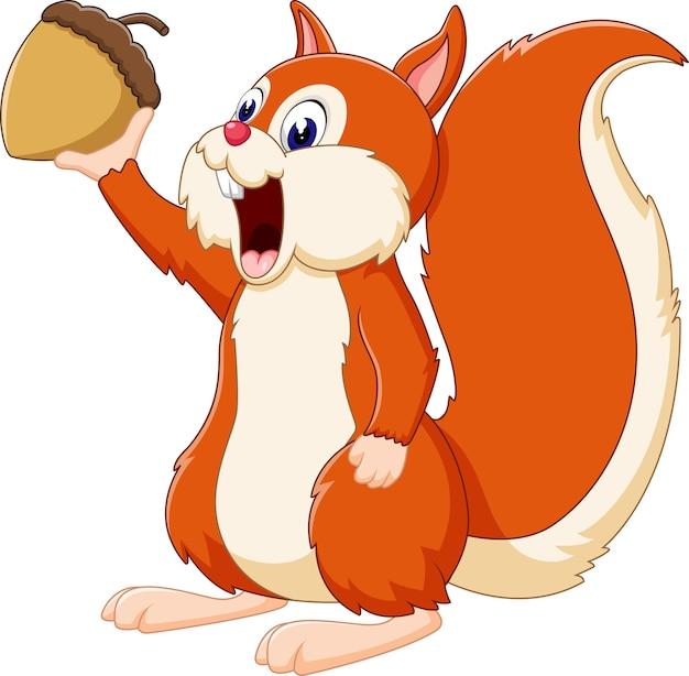 Illustration of cute squirrel cartoon