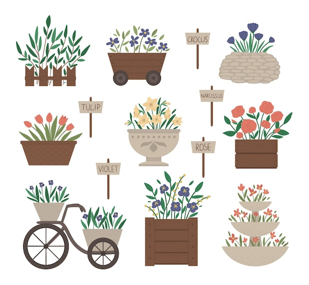 Illustration of different flower beds. garden decorative flowerbeds with plants. collection of beautiful spring and summer herbs and flowers with sign plates.