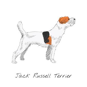Стиль рисунка рисунка собаки Бесплатные векторы