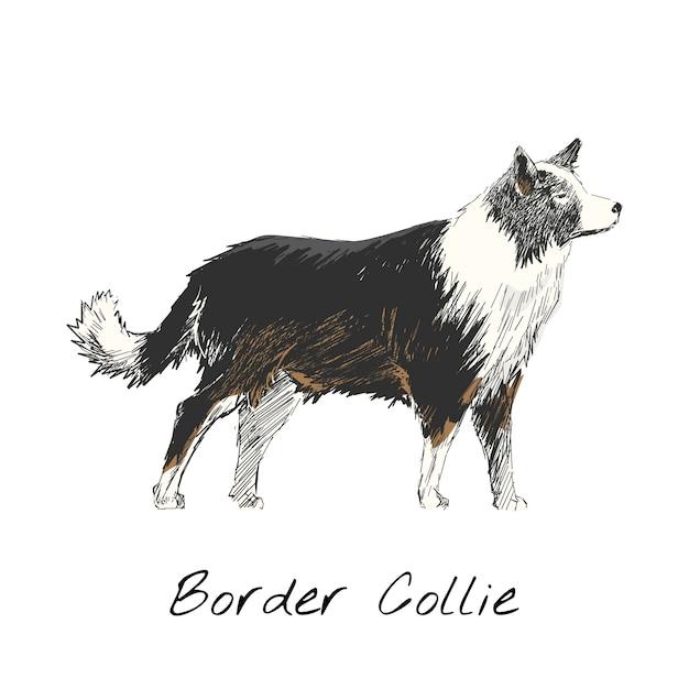 강아지의 그림 그리기 스타일