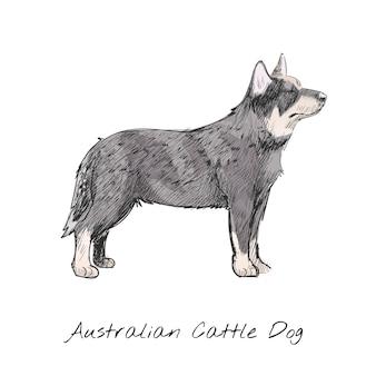 Стиль рисунка рисунка собаки