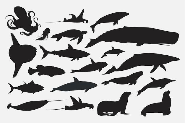 Стиль рисунка рисунка коллекции морской жизни