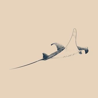 海の魚のイラストの描画スタイル