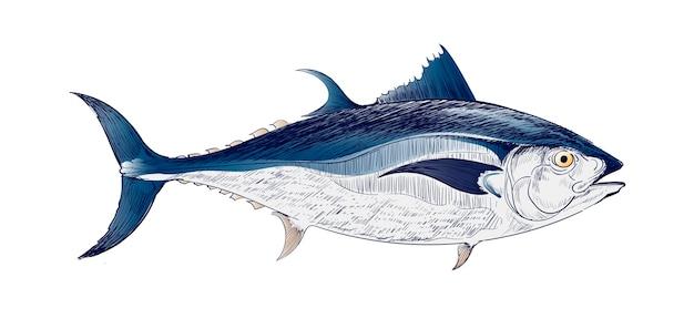 Иллюстрация рисунка стиля морской рыбы