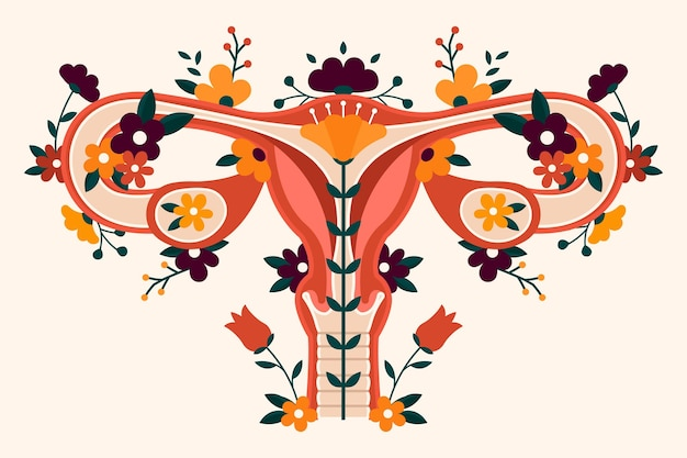 Illustration of female reproductive system with flowers
