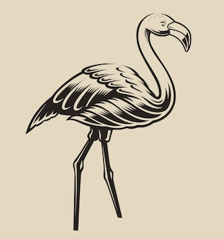 Illustration of a flamingo. element for