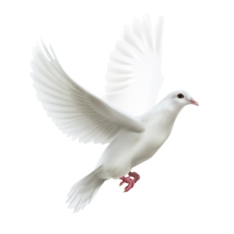 Illustration of free flying dove right side view