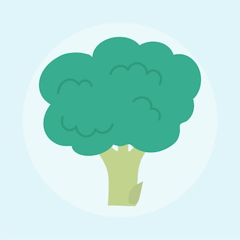 Illustration of fresh broccoli isolated