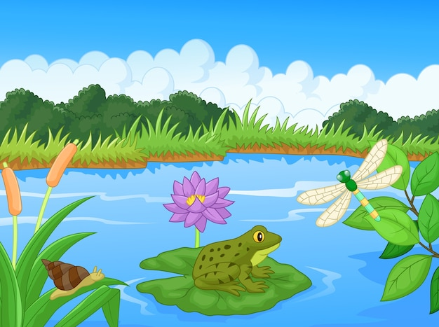 Illustration of a frog in the lake