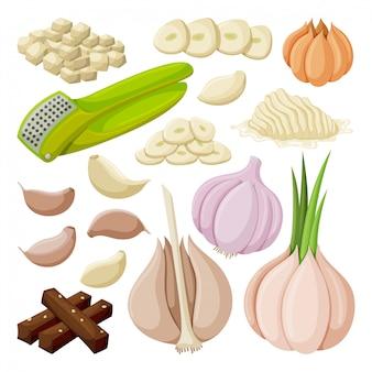 그림 흰색 배경에 마늘입니다. 격리 된 만화는 양파의 아이콘 음식을 설정합니다. 만화는 아이콘 마늘을 설정합니다.