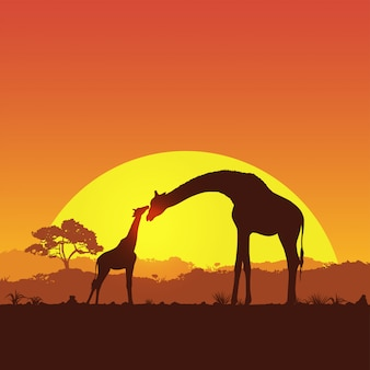 Illustration of giraffe mother and child in safari at sunset silhouette