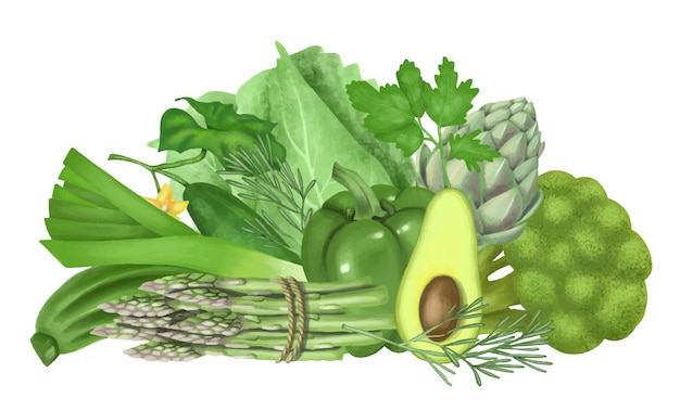 Illustration of green vegetables and fruits (avocado, pepper, cucumber, artichoke, broccoli, cabbage, asparagus), hand drawn