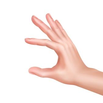 Illustrazione della mano che misura o mostra qualcosa