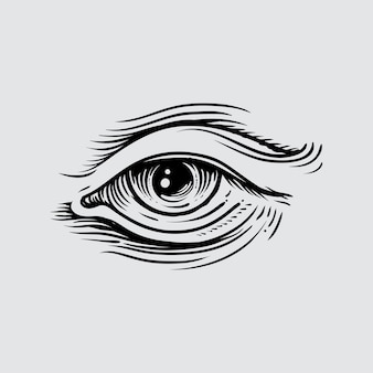Illustration of human eye in engraved style