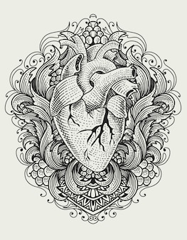 Illustration human heart on vintage engraving ornament