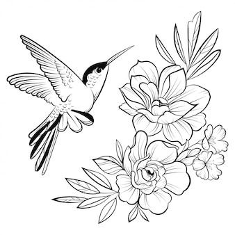 Illustration of a hummingbird. stylized flying bird. linear art.