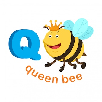 Illustration isolated alphabet letter q queen bee